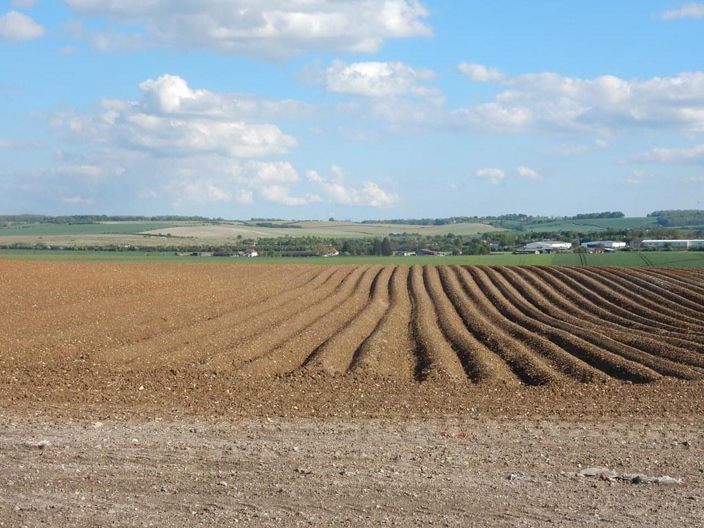 More ploughlines Baldock Circular