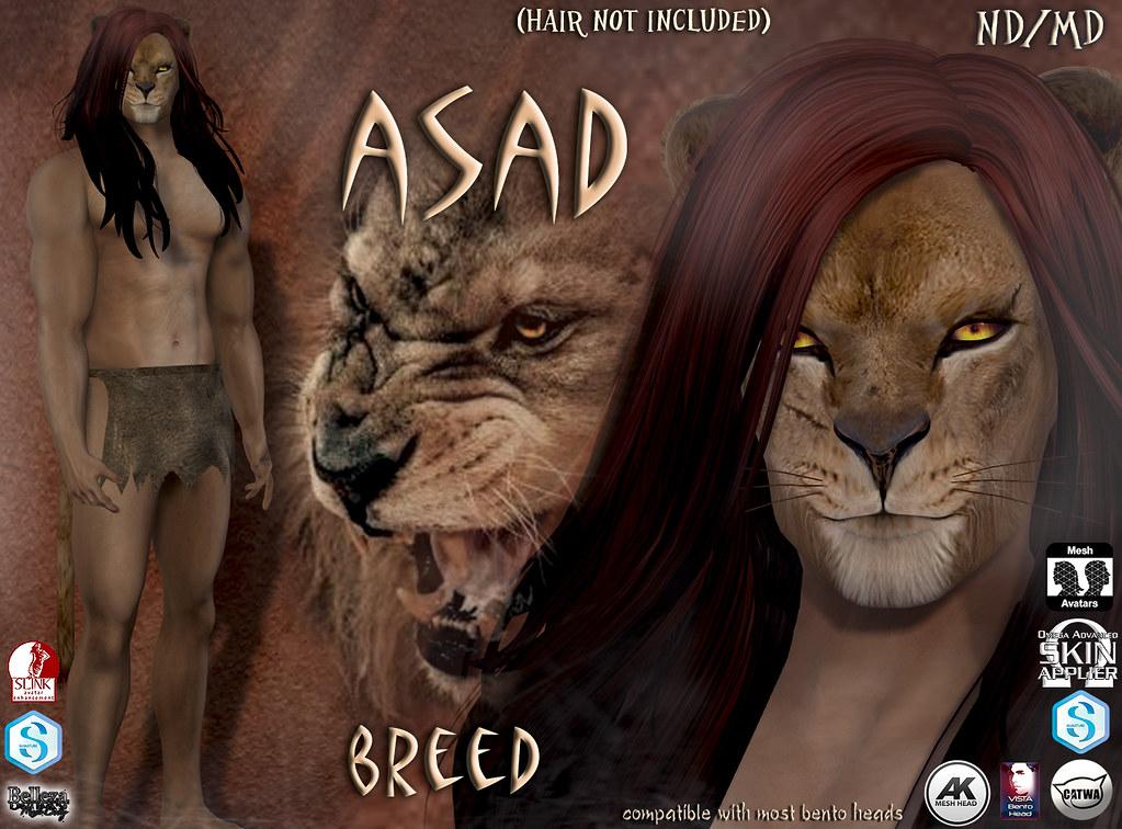 Asad avatar breed
