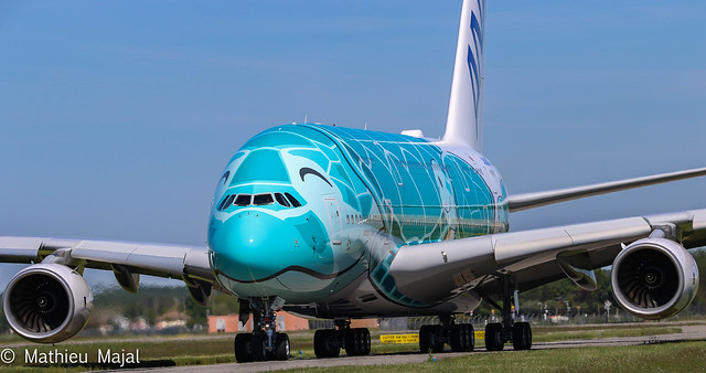Airbus A380-800 / All Nippon Airways