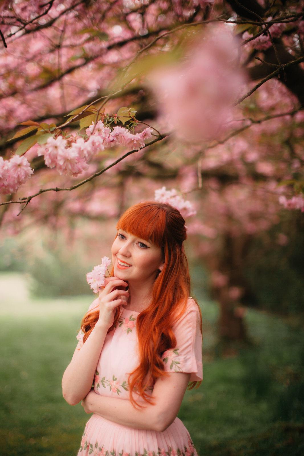 cherry blossom-9
