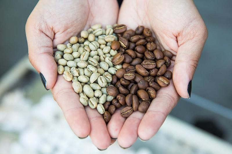 Các biến đổi hóa học trong quá trình rang cà phê