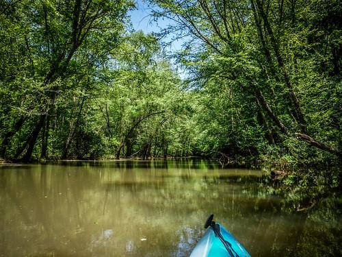 copyright2019thomasetaylor kayaking lakehartwell longnosecreek longnosefalls oconeecounty paddling southcarolina tugalooriver waterfall westminster unitedstatesofamerica