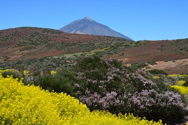 Las Cañadas del Teide.