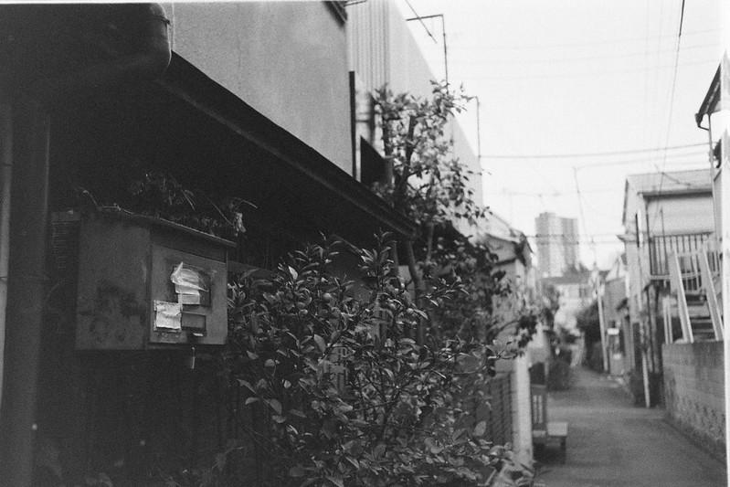 065LeicaM2 Summaron 35mm f35 Kodak 400TX南町