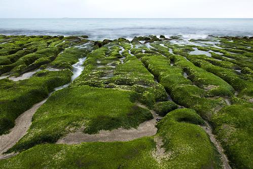 laomeigreenreef taiwan taipei seascape wave ocean shore seaside coast pacificocean landscape outdoor clouds sky water rock sea sand beach nature green 老梅綠石槽
