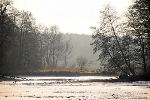 tworzyjanki rochna łódzkie lodzkie polska poland nature landscape view winter cold tree trees pond silhouettes air mist fog sunny