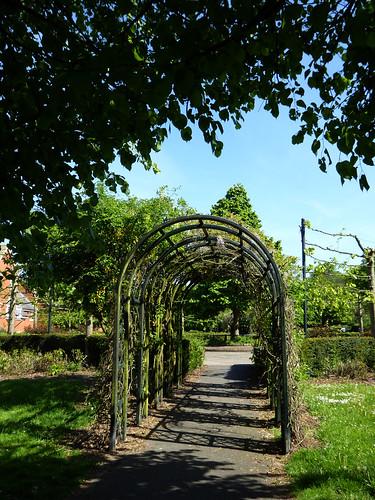 The Laburnum Arch