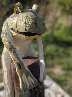 Frog Wood Carving
