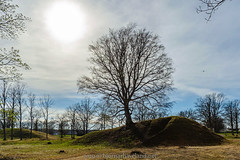 Viking Burial Mound