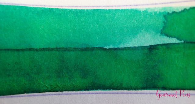 Toucan Aqua Ink Review 2