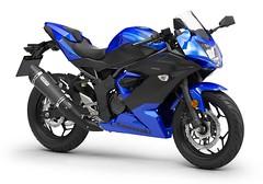 Kawasaki Ninja 125 Performance 2019 - 6