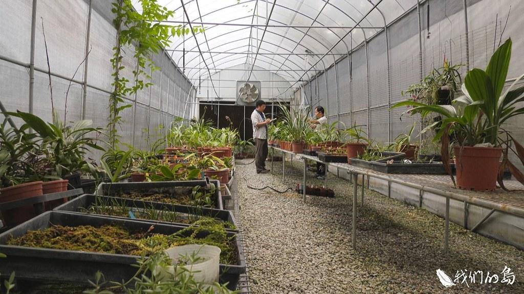 1001-3-101001-3-15特生中心針對生長在淺山、濱海地區,未受保護的物種,進行田野調查,並進行域外保存工作。