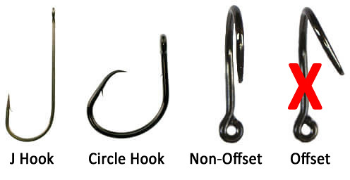Photo of various types of hooks