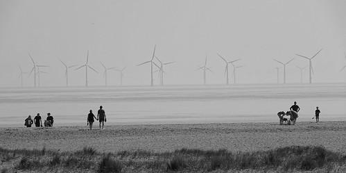 Lincolnshire Coast. April 2019