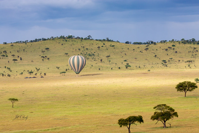 Landing in the Serengeti