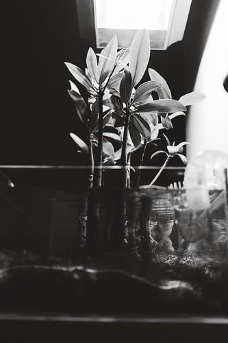 Untitled | by BradBphoto