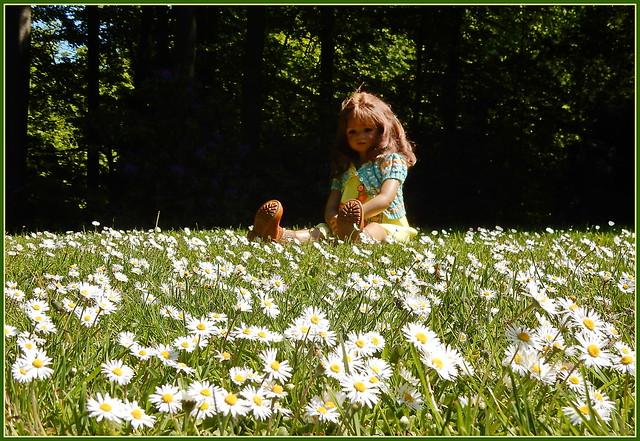 🌼💛🌼 Milina ... unser kleines Gänseblümchen  🌼💛🌼