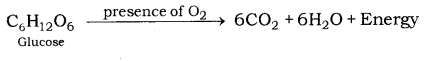 Life Processes Class 10 Notes Science Chapter 6 11