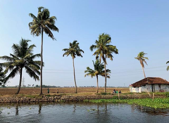 Kerala, India 2019 125