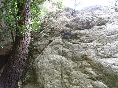 Brèche du Carciara : les barreaux métalliques