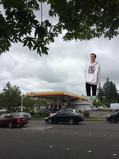 Giant Carson