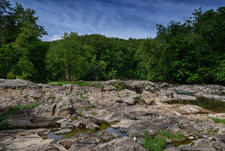 Roanoke River Bed | by Vincent1825