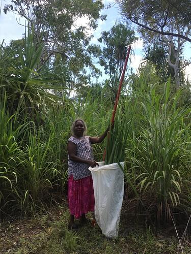 Featured Artist Dorothy Bienanwangu of Mimi Aboriginal Art and Craft. Image courtesy of Mimi Aboriginal Art and Craft.