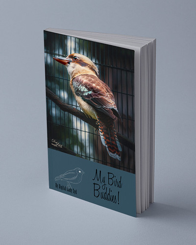 Mockup image of a book