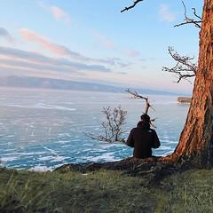 薩滿樹下俯瞰冰湖,其實好凍。 【浪遊旅人】http://bit.ly/1zmJ36B #bacpackerjim #tree #hotel #MelodiaOlkhona #lake #baikal #khuzhir #irkutsk #Ирку́тск #siberia #russia #россия #北途三國貝加爾