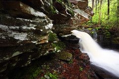 On the Ledge at R. B. Ricketts Falls in Ricketts Glen State Park