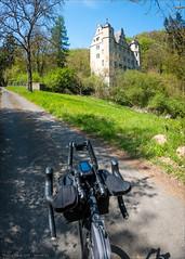 Schloss-Perspektiven