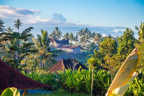 bali indonesia penestanan ubud sunrise