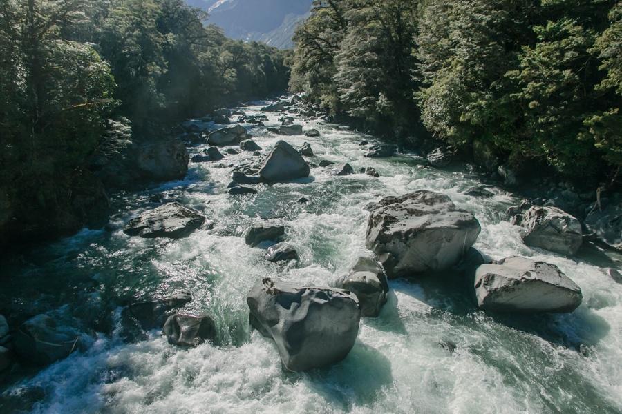 Новая Зеландия: Те-Анау и Фьордленд Новая Зеландия: Те-Анау и Фьордленд 46958106745 83c2652a2e o