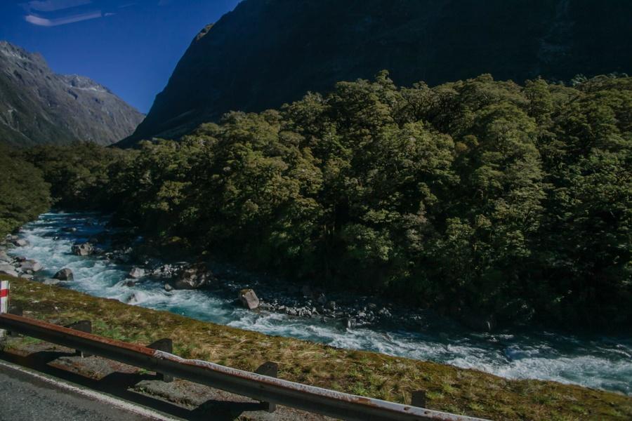 Новая Зеландия: Те-Анау и Фьордленд Новая Зеландия: Те-Анау и Фьордленд 46958107055 97fc54021a o