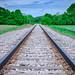 Railroad tracks near Rutland, Ohio in Southeast Ohio by diana_robinson