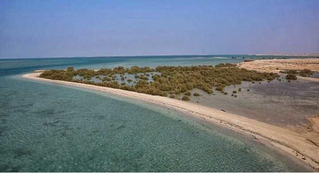 5119 10 Best Public and Private Beaches in Saudi Arabia 03