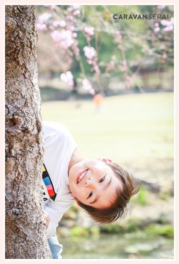 木のかげから顔を出す男の子