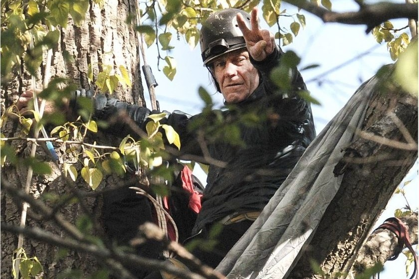 photo of Terry Christenson in Tree
