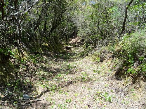 Le chemin de Luviu après le 2ème plateau herbeux