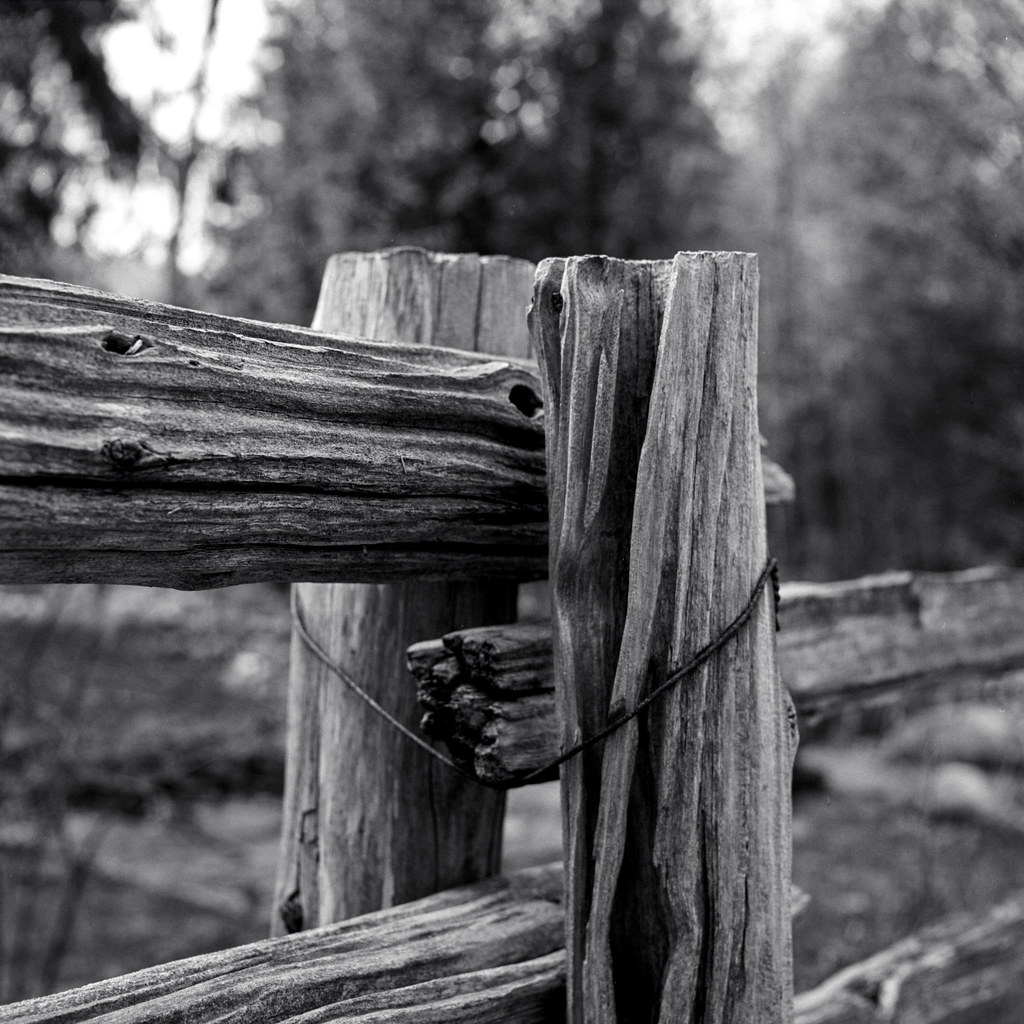 Rustic Fence Close Up