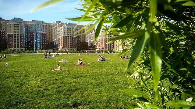 Лето пришло в Кудрово! #лето, #кудрово, #отдых, #СПб.