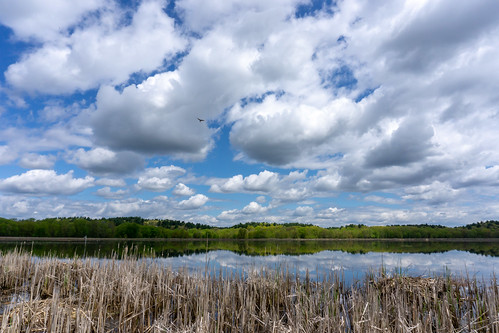 greatmeadowwildliferefuge concordma nature landscape clouds spring marsh sonya6000