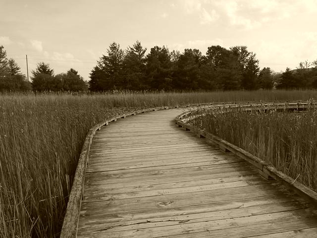 West Park - Prairie Pond Boardwalk