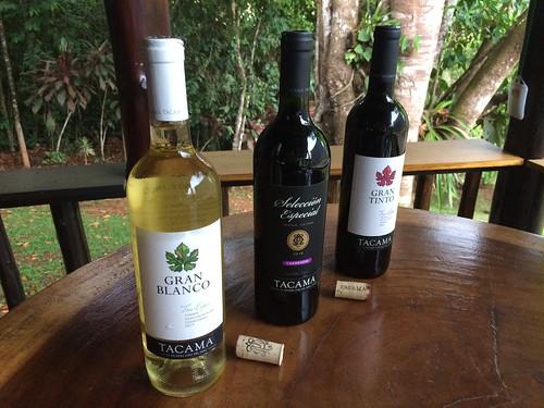 Tacama Wine Tasting lineup, Gran Blanco, Selección Especial, Gran Tinto