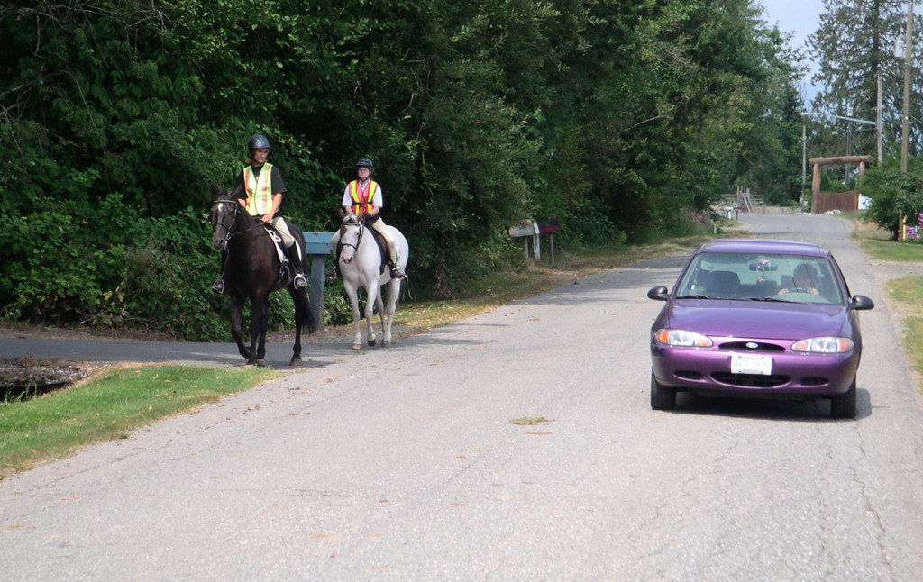 Drivers reminded to share the road with horses and their riders