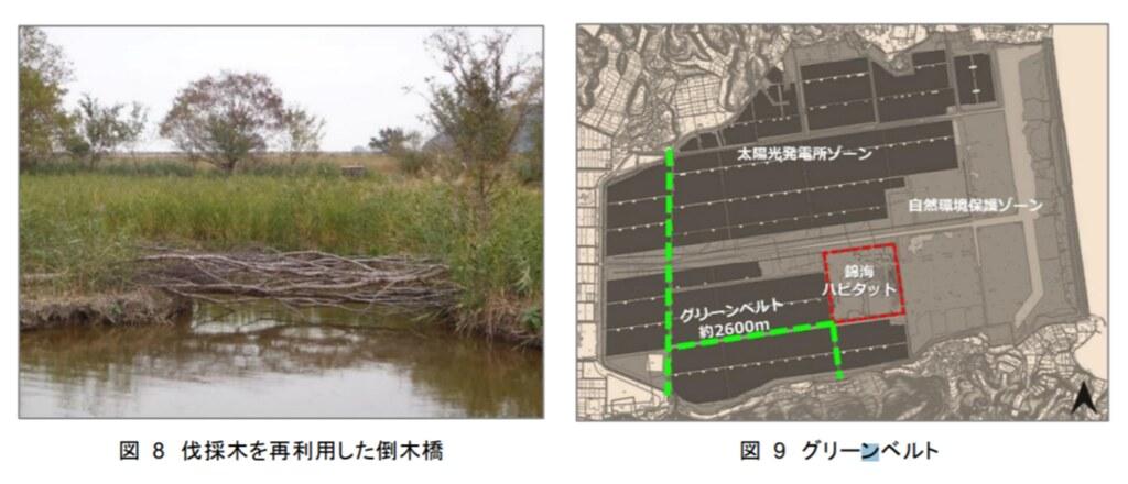 圖片擷取自報告〈錦海ハビタット:瀬戸内Kirei太陽光発電所建設における湿地再生〉