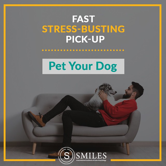 Pet your dog & evaporate stress