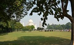 India 91