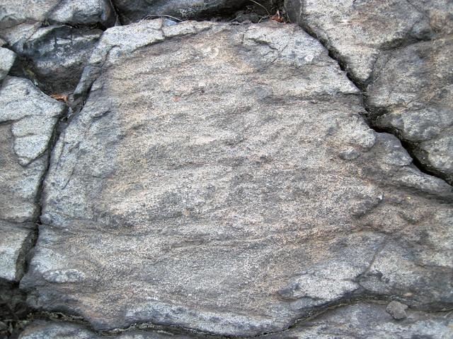 Metagraywackes (Chelmsford Formation, Paleoproterozoic, 1.74 Ga; Larchwood North outcrop, Sudbury Impact Structure, Ontario, Canada) 38