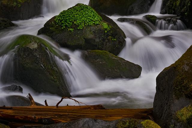Falls Creek Falls detail